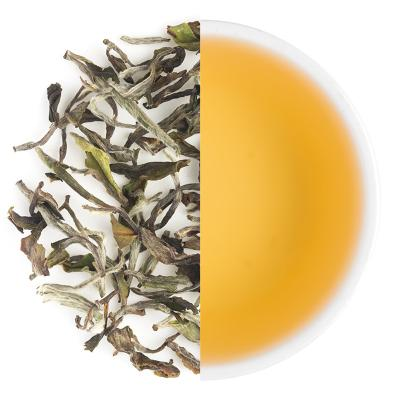 Castleton Moonlight Spring White Tea Leaves & Liquor