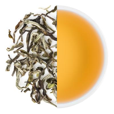 Thurbo Moonlight Spring White Tea Leaves & Liquor