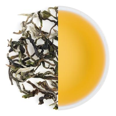 Jungpana Exotic Spring Clonal Black Tea Leaves & Liquor