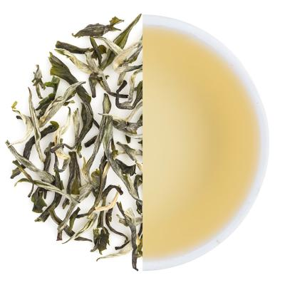 Glendale Exotic Winter Nilgiri Frost Green Dry Tea Leaves & Liquor