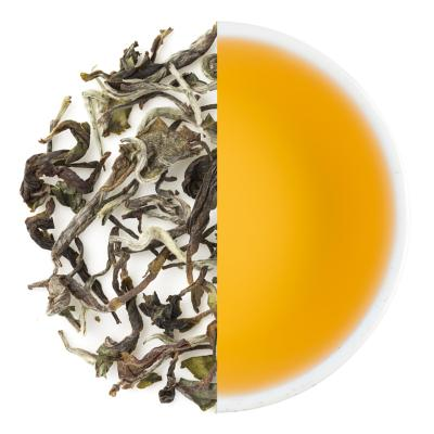 Glenburn Special Spring Darjeeling Oolong Dry Tea Leaves & Liquor