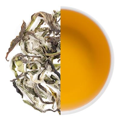 Himalayan Shangri La Special Spring Oolong Dry Tea Leaves & Liquor